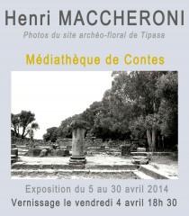 Henri Maccheroni, Tipasa, Freixe, Ughes, Monticelli, La diane française