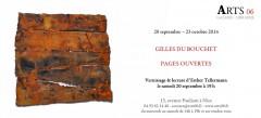 Exposition Gilles du Bouchet.jpg
